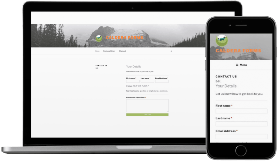 Caldera Forms looking good on desktop and mobile device.